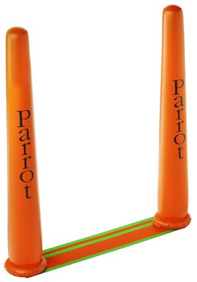 Parrot Racing Pylon